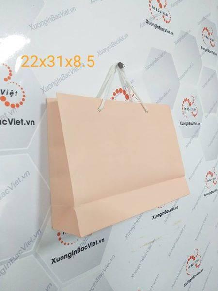 Túi giấy Krap Nhật 1 màu 22*31*8.5
