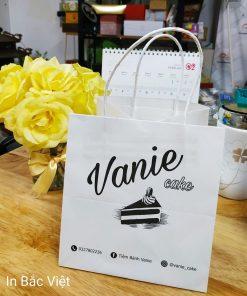 in túi giấy cho các cửa hàng shop thời trang tại hà nội